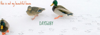 Daysgoby